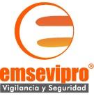 EMSEVIPRO - SEGURIDAD