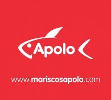 CONGELADOS-APOLO - PESCADO / MARISCO (MAYORISTAS)