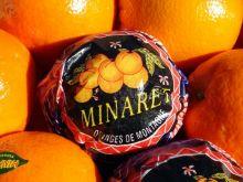 FRUTAS MINARET, AGRICULTURA PRODUCTOS en SUECA - VALENCIA