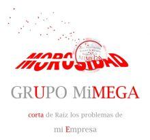 MIMEGA-CONTROL-DE-RIESGOS-EMPRESARIALES-SL - GESTION DE COBROS / MEDIOS DE PAGO