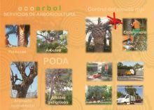 ECOARBOL - JARDINERIA / PAISAJISMO