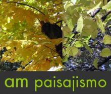 AM-ESTUDIO-DE-PAISAJISMO-SL - JARDINERIA / PAISAJISMO