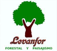 LEVANFOR-SL - TRABAJOS FORESTALES / SELVICULTURA