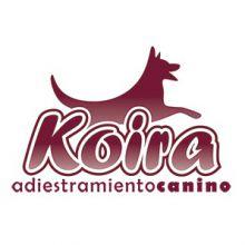 KOIRA-EDUCACION-Y-BIENESTAR-ANIMAL - ADIESTRAMIENTO / CRIA DE ANIMALES