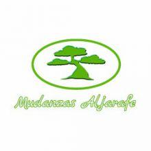 MUDANZAS-ALJARAFE - MUDANZAS / GUARDAMUEBLES