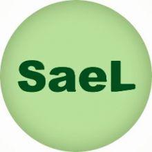 ASCENSORES-SAEL - ASCENSORES / MONTACARGAS / ELEVACION