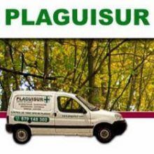 PLAGUISUR - DESINFECCION / DESRATIZACION / DESINSECTACION / PLAGAS
