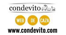 CONDEVITO - CAZA / PESCA
