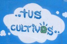 TUS-CULTIVOS - ABONOS / FERTILIZANTES / FITOSANITARIOS / SEMILLAS
